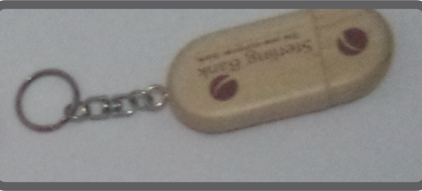 Branded Flash Keyring
