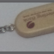 Branded Flash Keyring
